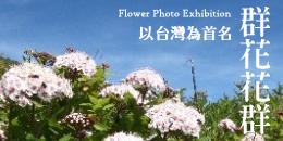 banner_flower_3